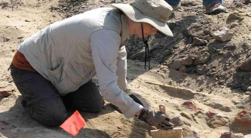 Archeolog podczas prac wykopaliskowych