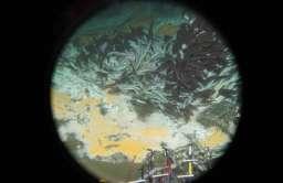Mikroorganizmy głębinowe