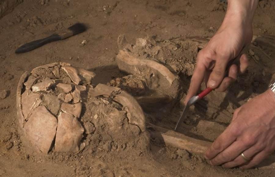 Ludzkie kości