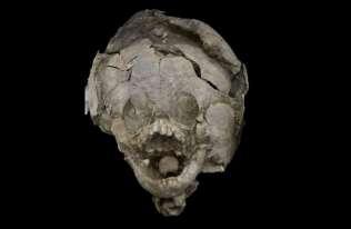 """Niemowlęta sprzed 2100 lat pochowane w """"hełmach"""" z czaszek starszych dzieci"""