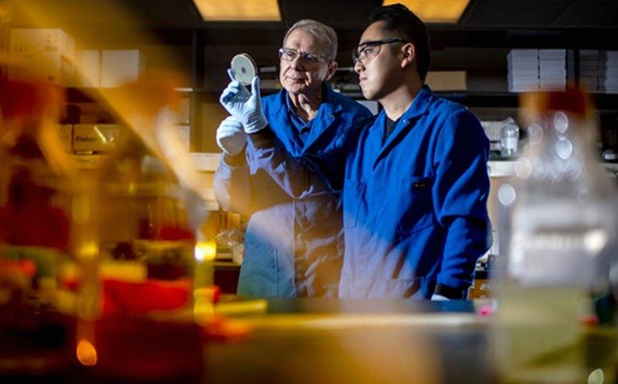 Naukowcy znaleźli nowy antybiotyk - darobaktynę