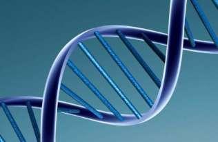 Kod DNA