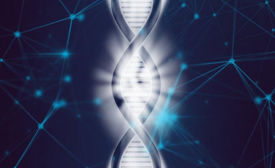 Przełomowe badania Polaków: mapa nowotworowych mutacji w genach związanych z mikroRNA