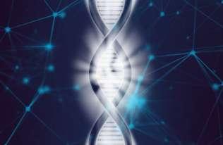Naukowcy w pełni zsekwencjonowali chromosom X