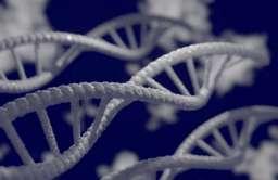 Badania pokazują, że tylko niewielka część naszego DNA jest unikalna dla współczesnych ludzi