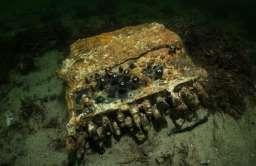 Maszyna szyfrująca Enigma znaleziona na dnie Bałtyku