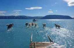 Postępujący proces topnienia na Grenlandii
