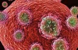 """""""Londyński pacjent"""" bez śladów wirusa HIV od 30 miesięcy"""