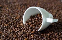 Międzynarodowy Dzień Kawy. Co wspólnego ma mała czarna ze zwierzętami?