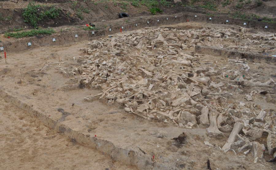 Archeolodzy odkryli krąg sprzed 20 tys. lat zbudowany z kości mamutów