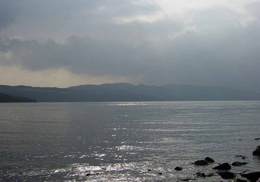 Potwór z Loch Ness to przerośnięty węgorz?