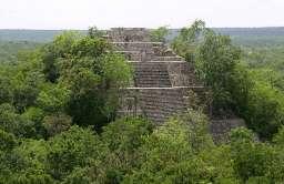 Piramida Majów w Calakmul - tzw. Struktura I