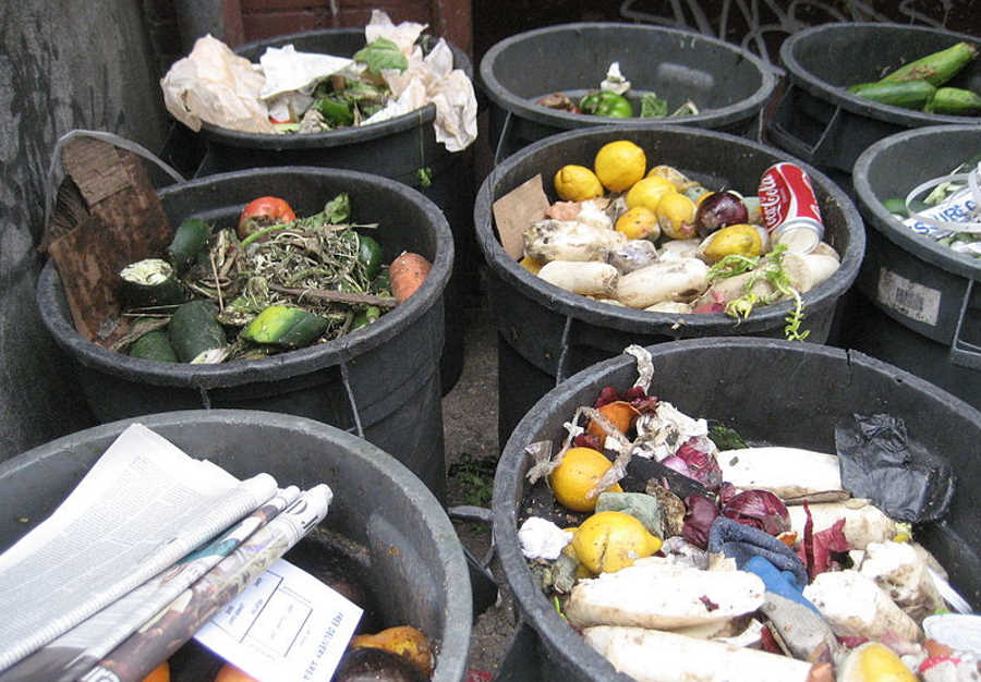 Światowy Dzień Żywności. Nawet jedna trzecia żywności trafia do kosza