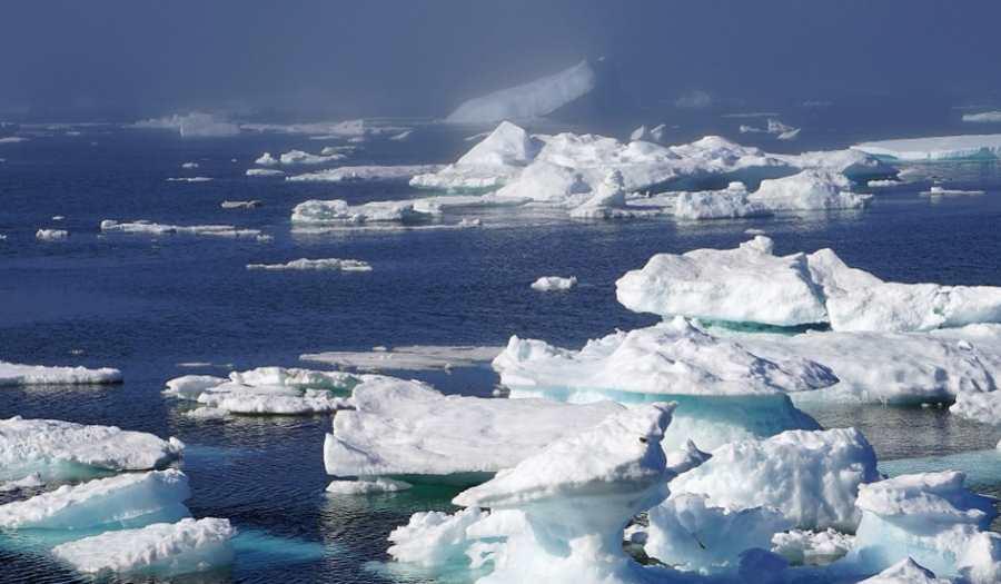 Topniejący lodowiec odsłonił pięć nowych wysp w Arktyce