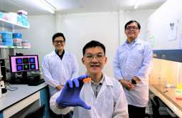 Eksperymentalna terapia niszczy komórki nowotworowe bez użycia leków