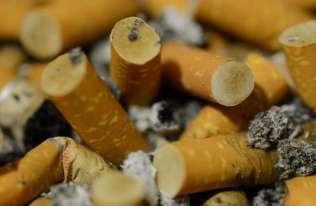 Niedopałki papierosów są jednym z najbardziej powszechnych odpadów na Ziemi i utrudniają wzrost roślin