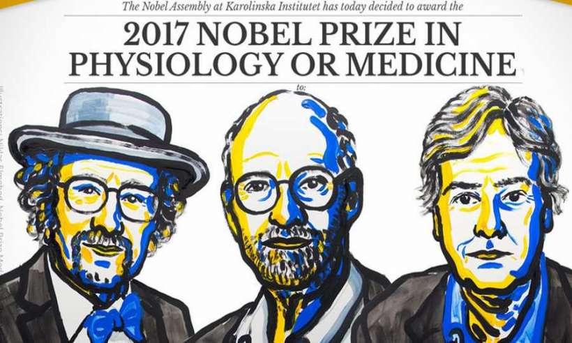 Przyznano Nagrodę Nobla 2017 z medycyny i fizjologii
