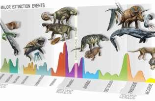 Odkryto nieznany epizod masowego wymierania gatunków. To on zapoczątkował erę dinozaurów