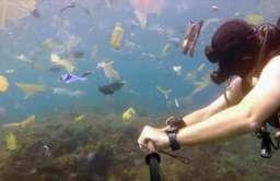 Morze pełne plastikowych odpadków