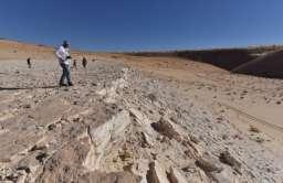 Na Półwyspie Arabskim odkryto ślady stóp człowieka sprzed 120 tys. lat