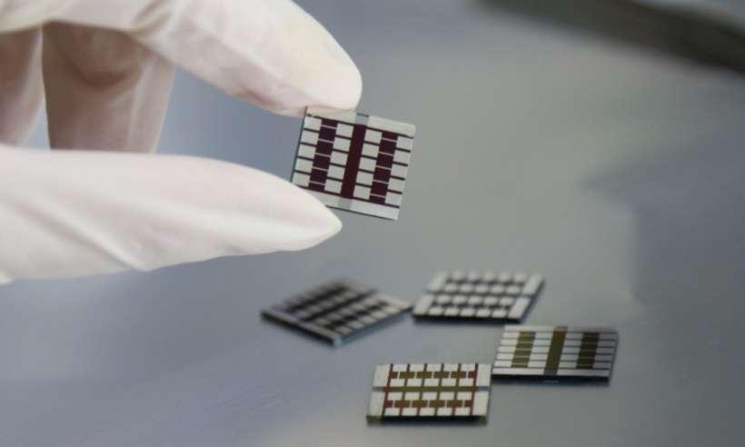 Kapsaicyna zwiększa wydajność ogniw słonecznych z perowskitów