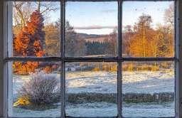 Nowy sposób na przezroczyste drewno, które mogłoby zastąpić szkło w naszych oknach