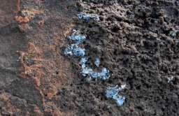 Plasticrust - nowy rodzaj zanieczyszczenie tworzywami sztucznymi