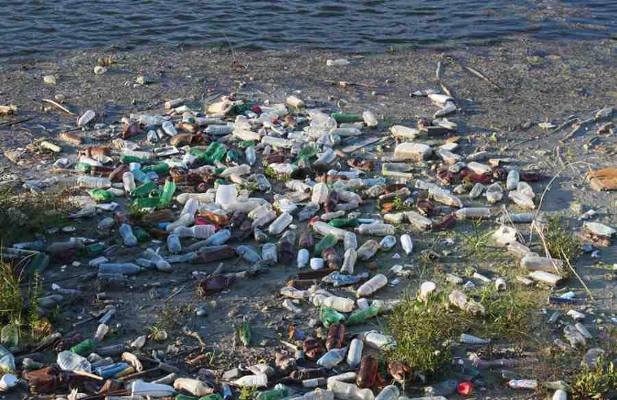Wyspa śmieci