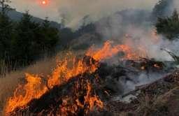 """Kryzys klimatyczny: 11 000 naukowców ostrzega przed """"niewyobrażalnym cierpieniem"""""""