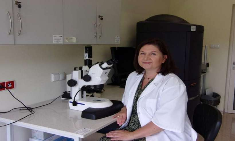 Zwyczajny zawód, niezwyczajna praca - o młodych naukowcach z Medycznego