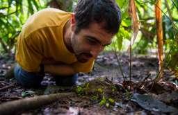 Praktyki rolnicze wśród mrówek