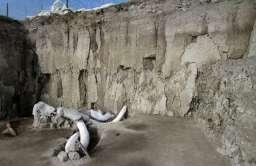 Archeolodzy odkryli gigantyczne pułapki sprzed 15 tys. lat pełne kości mamutów