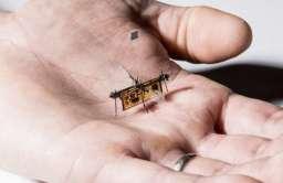 RoboFly - latający robot o rozmiarach owada