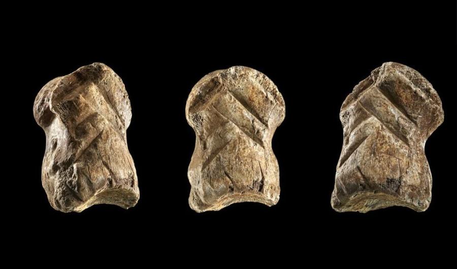 Neandertalskie dzieło sztuki sprzed 51 tys. lat