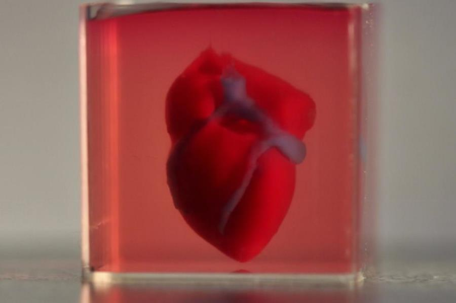 Sztuczne serce z drukarki 3D
