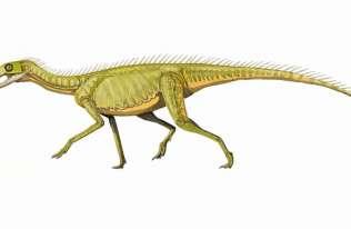 Naukowcy z Uniwersytetu Warszawskiego zaproponowali nową koncepcję powstania dinozaurów