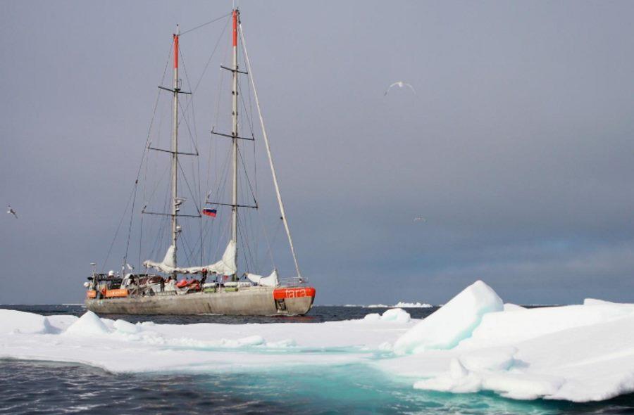 Statek badawczy Tara