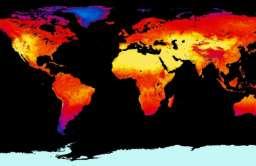 NOAA: lipiec najgorętszym miesiącem w historii pomiarów