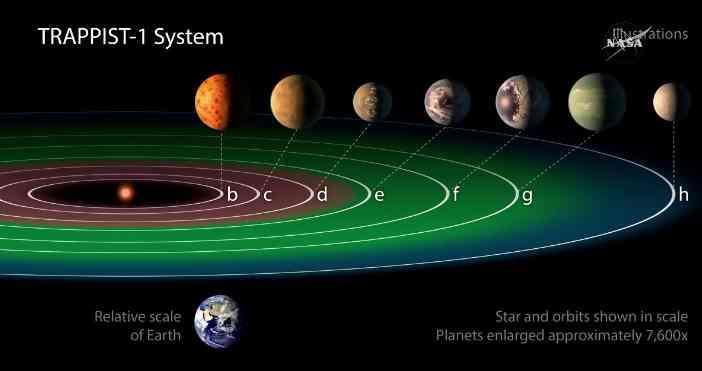 Schemat systemu TRAPPIST-1