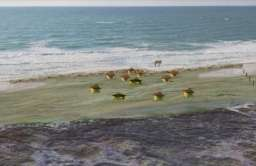 Wał przeciwpowodziowy sprzed 7 tys. lat w Tel Hreiz