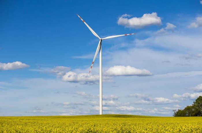 Energia wiatru, pole rzepaku i wiatrak produkujący energię