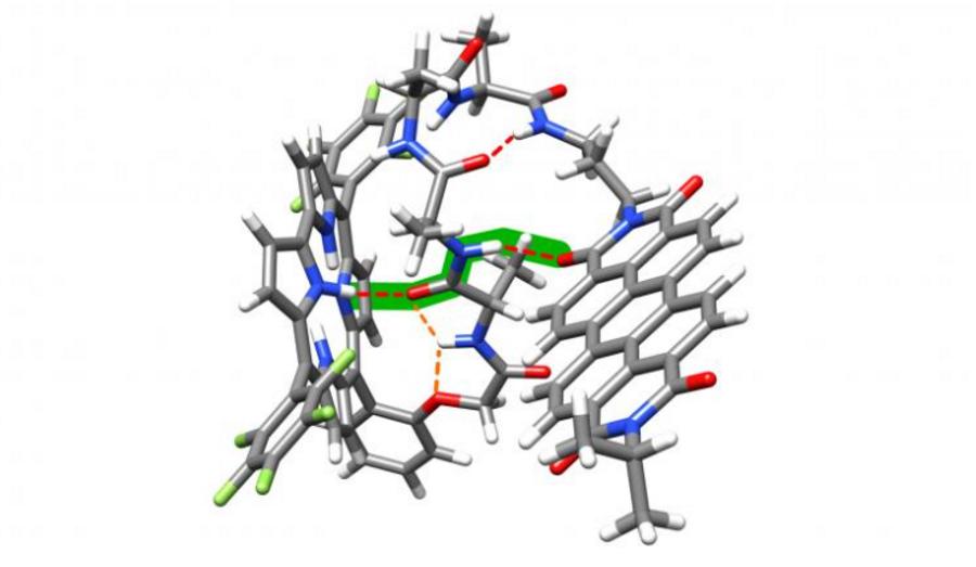Wiązania wodorowe pomagają w przenoszeniu elektronów