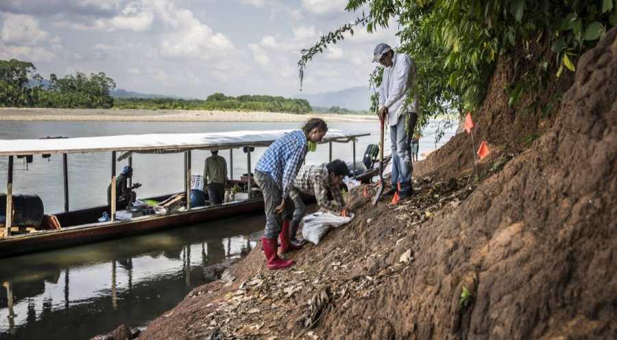 Wykopaliska na brzegu rzeki Rio Alto Madre de Dios w Peru