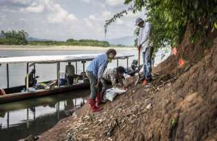 W amazońskiej dżungli znaleziono skamieniałości małpy o rozmiarach chomika