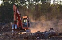 Wylesianie