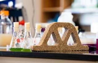 """Naukowcy opracowali materiał budowlany, który... żyje i może się """"rozmnażać"""""""