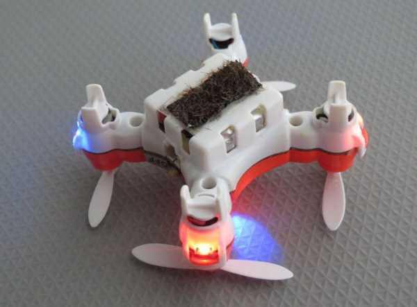 dronpszczola